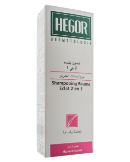HEGOR SHAMPOING 2 EN 1 PROTEINES DE SOIE 150ML