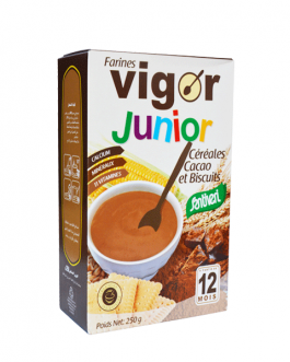 VIGOR FARINE CACAO BISCUITS 250G