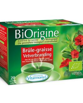 BIORIGINE INFUSION BIO BRULE GRAISSE TISANE SACHT ...